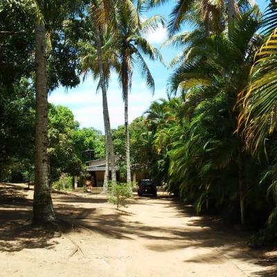 Sítio em Cajazeiras, Salvador