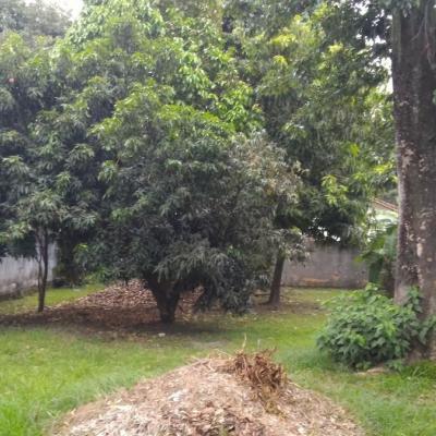 Terreno em Maravista Itaipu
