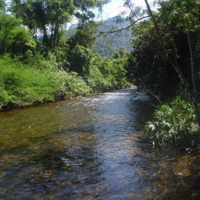 Fazenda 423 Alqueires Mineiros, Mambucaba, Angra dos Reis - RJ