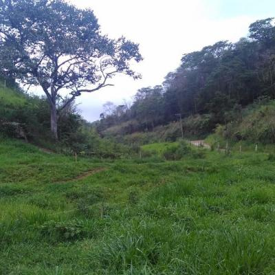Fazenda 21 Alqueires Mineiros de frente (BR-116) Presidente Dutra, Piraí - RJ